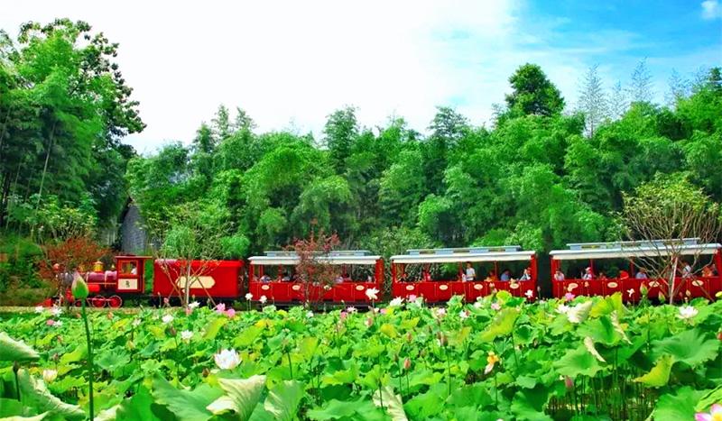 安吉县鲁家村